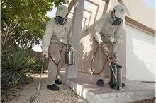 Pest Exterminators