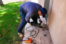 Home Pest Control Services – Canberra