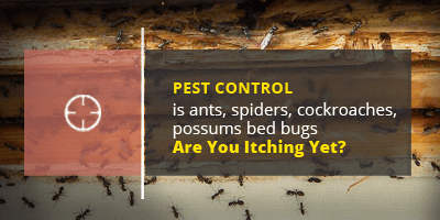 pest control banner