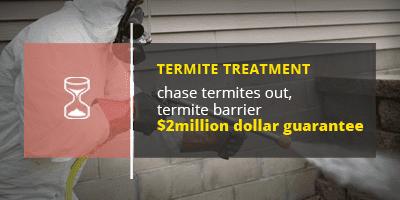 termite treatment banner