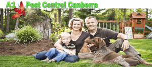 Reviews In Pest Control