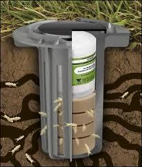 Termite Baiting