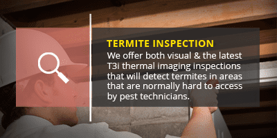 termite inspection banner