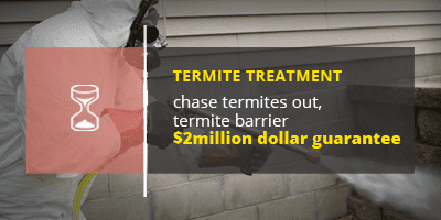 termite treatment banner