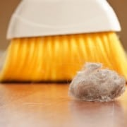 Dust mite management tips