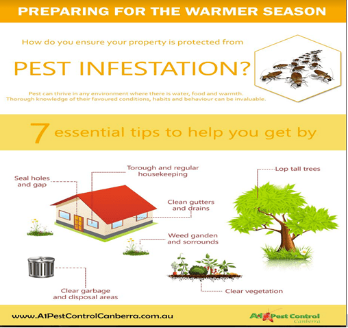 Proven Tips to Keep PESTS Out