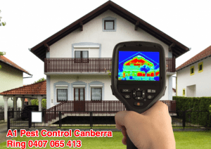 FREE Thermal Imaging When Selling Your Home In Canberra! 1