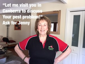 """""""ATTENTION PEST OWNERS CANBERRA"""" 1"""