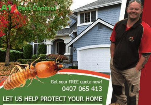 How much does termite treatment cost?