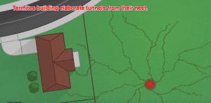 A1 PEST CONTROL CANBERRA EXPLAINS TERMITE BARRIERS 1
