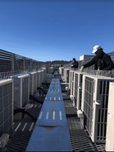 Bird proofing commercial building Canberra