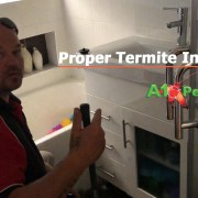 Proper Termite Inspection In Your Property Canberra