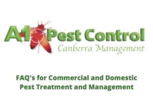 A1 Pest Control Canberra FAQ's for Commercial and Domestic Pest Treatment and Management