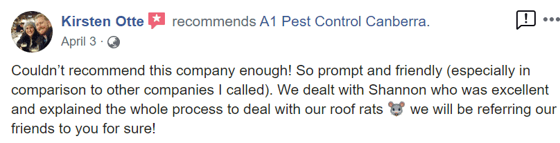 Pest Control (Commercial and Home) 12