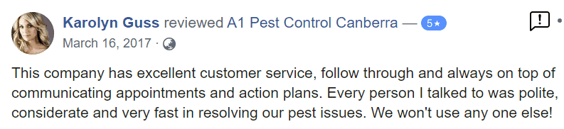 Pest Control (Commercial and Home) 11